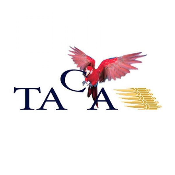 Brand identity design for TACA